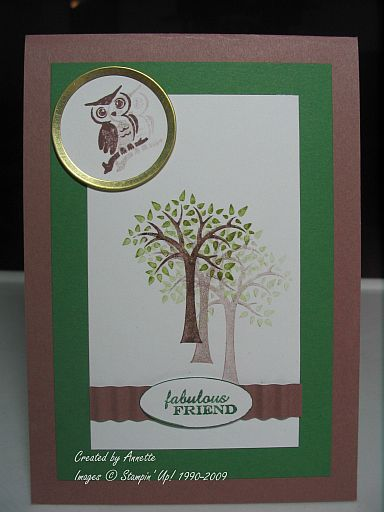 Forest Friends Cocoa