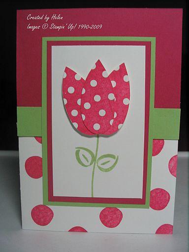 Pick a Petal Tulip HELEN