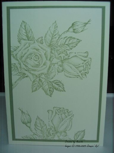 Stipple Rose Moss Vanilla