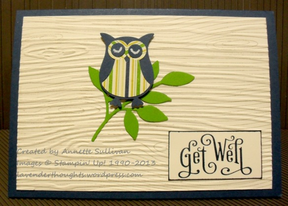 Perfectly Penned Owl Tissue Box