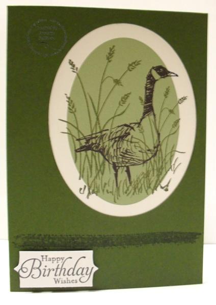 Wetlands Mossy Duck
