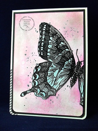Swallowtail Marina Mambo