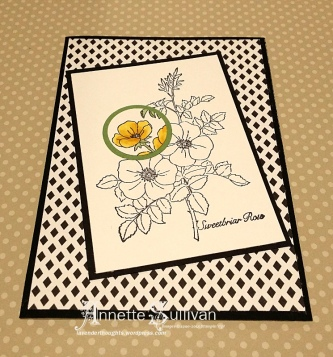 Sweetbriar Rose Daffodil Spotlight