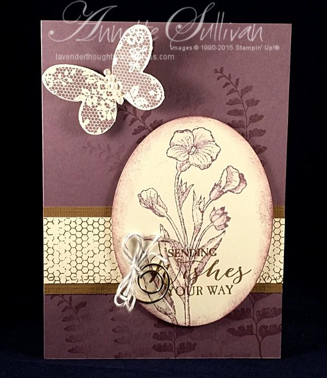 Butterfly Basics SoftPlum
