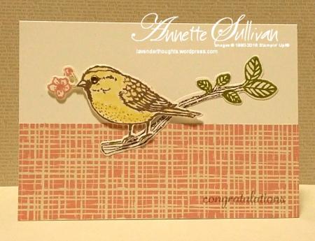 Best Birds Blushing Taupe