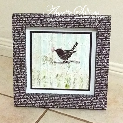 Best Birds Woodland Chocolate Shadow Box