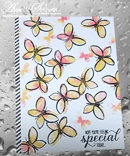 garden-in-bloom-baby-wipe-butterfly-delight