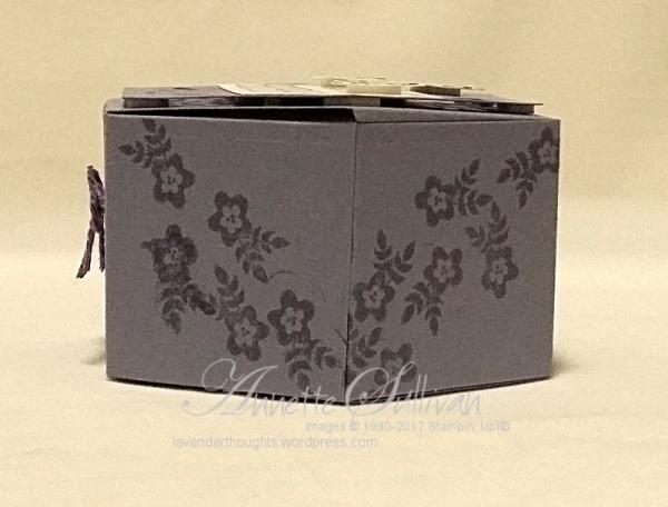 window-shopping-wisteria-box-side