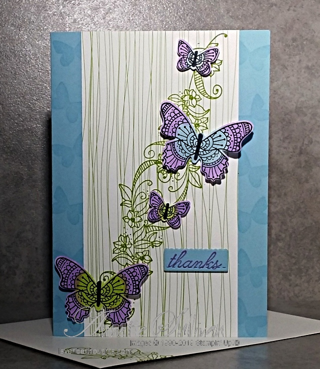 Butterflies with Butterfly Gala and BeautyAbounds