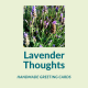Lavender Thoughts