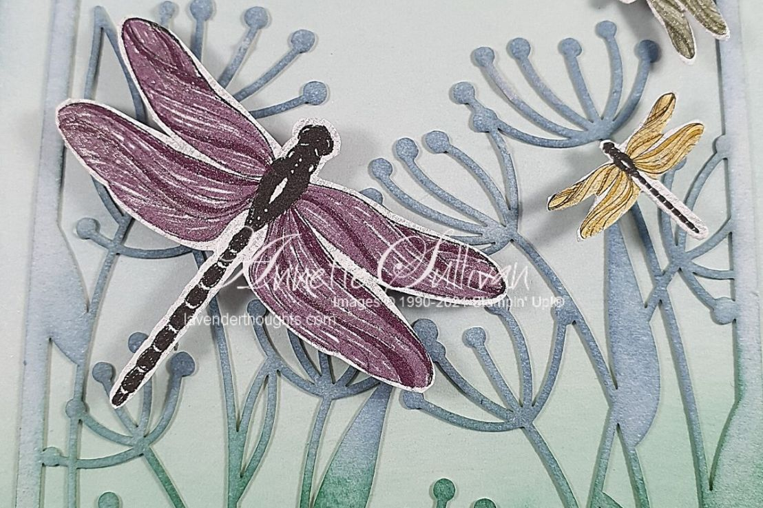 Dandelions and Dragonflies with a FREEPDF