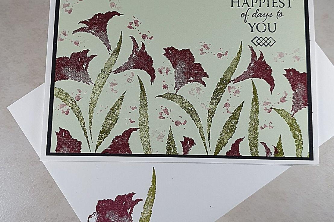 Amaryllis Abloom – beautifullilies